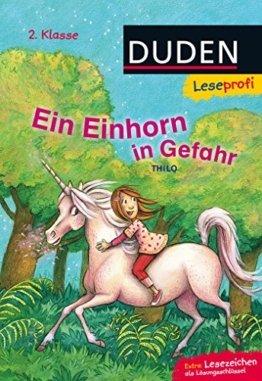 Leseprofi - Ein Einhorn in Gefahr, 2. Klasse -