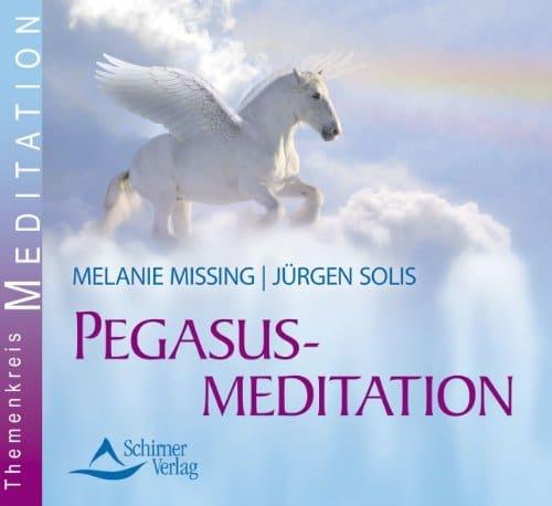 Einhorn Meditation & Musik