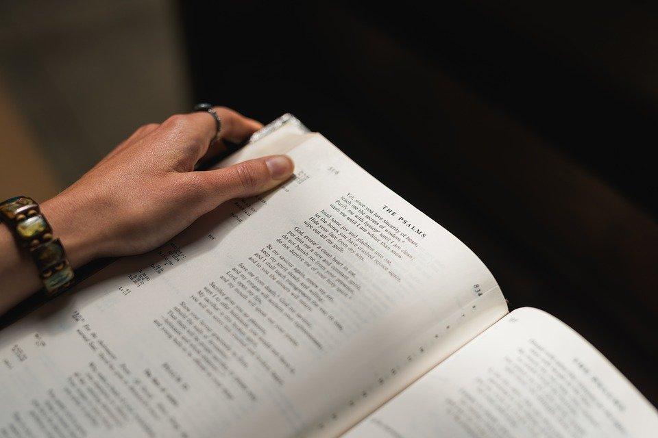 bibel einhorn